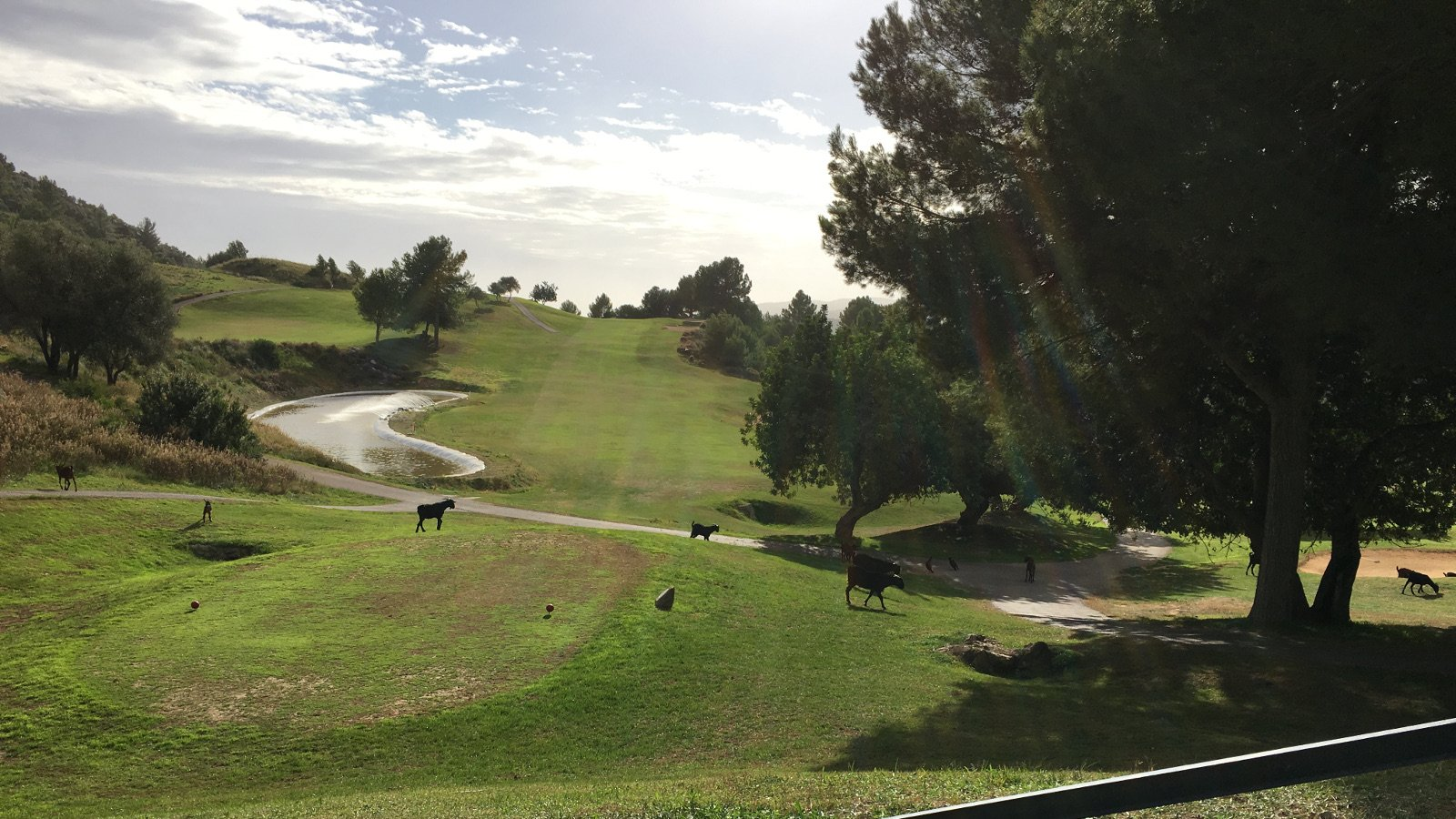 Mallorca Golf Trophy